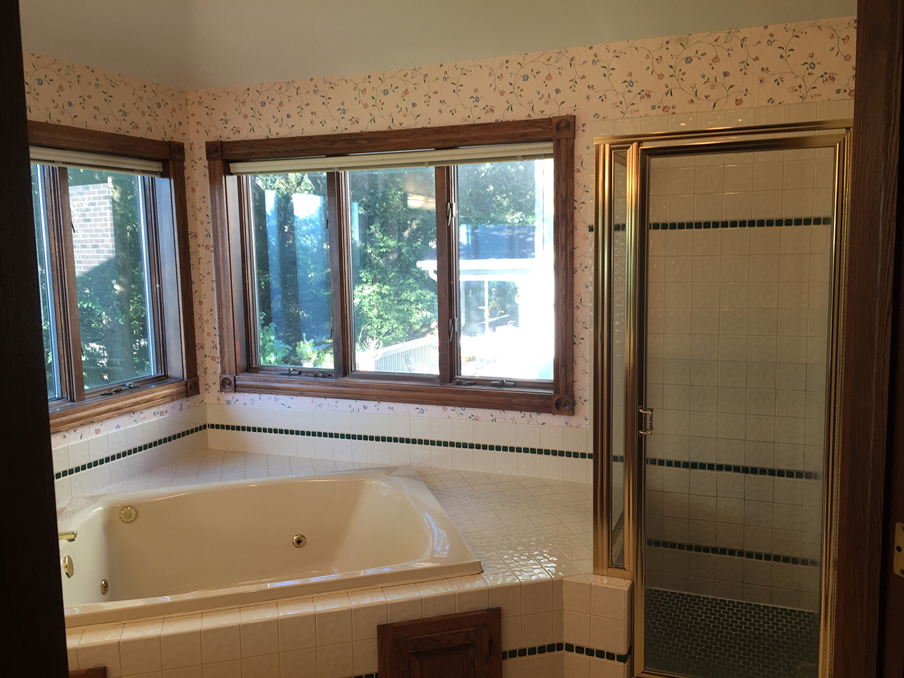 Apple Valley Bathroom Remodel: BEFORE