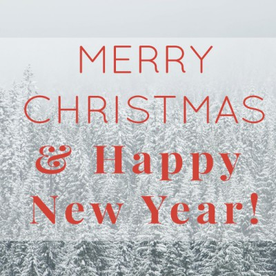 Merry Christmas J Carsten Remodeling Twin Cities MN